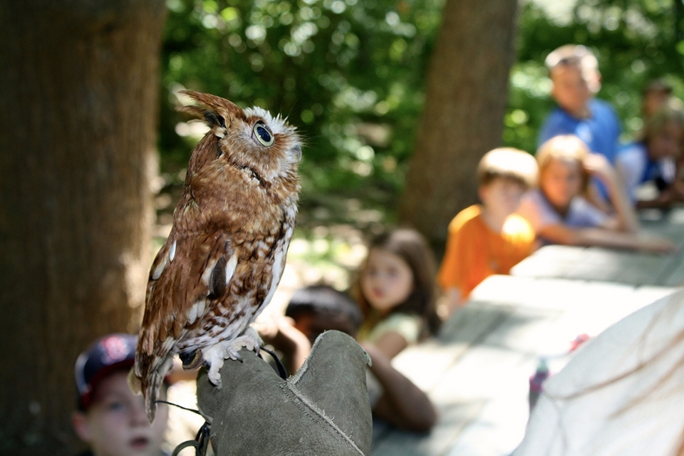 Keeper of the Animals, a behind-the-scenes look at the care of the nature center's resident animals, is open to ages 11 through 15 and runs July 17-21.