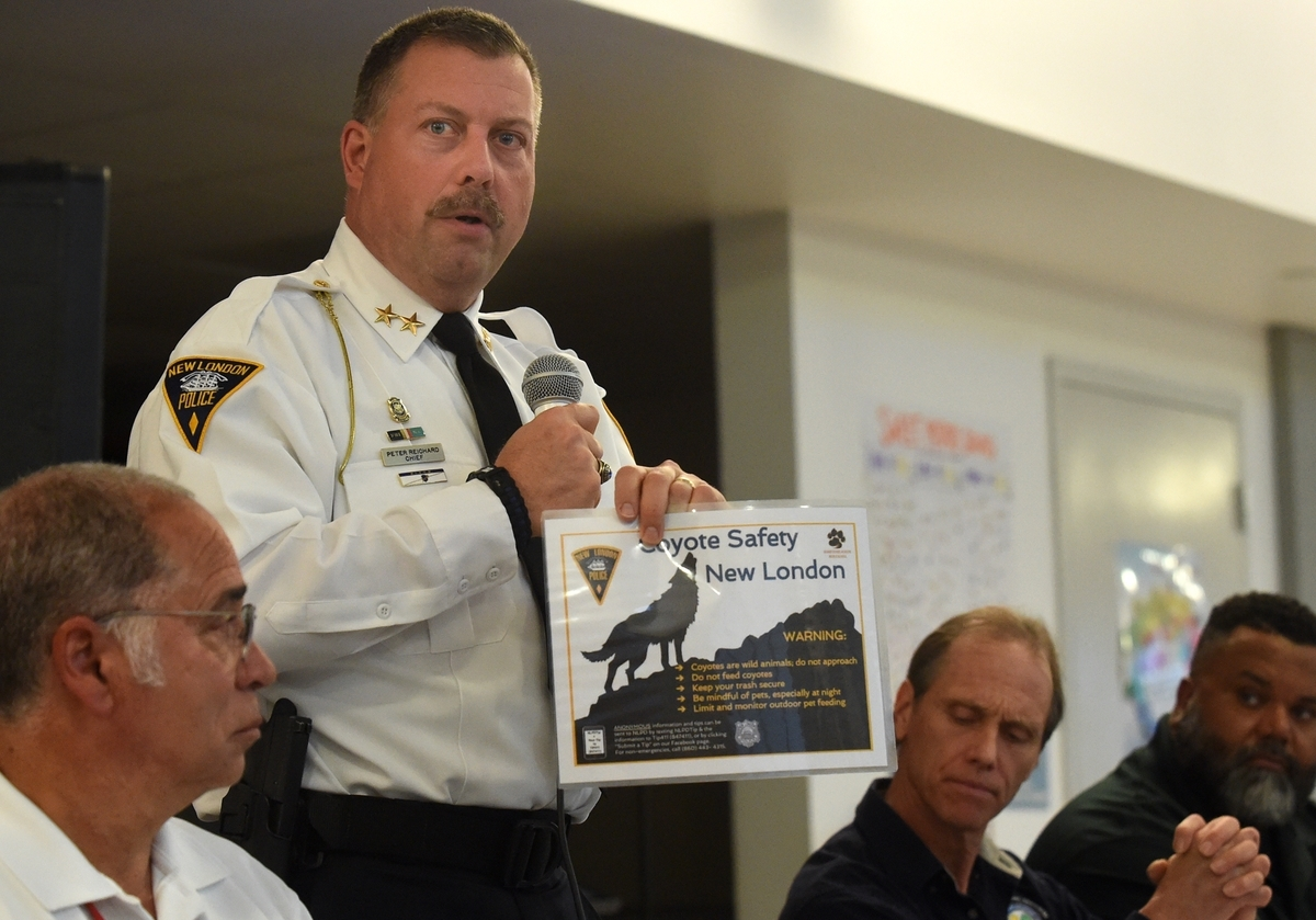 <b></b> New London Police Chief Peter Reichard holds a sign that will be available about what can be done for coyote safety during the during a community meeting at Nathan Hale Arts Magnet School in New London regarding the coyote population in the area, Monday, April 24, 2017.  (Dana Jensen/The Day)