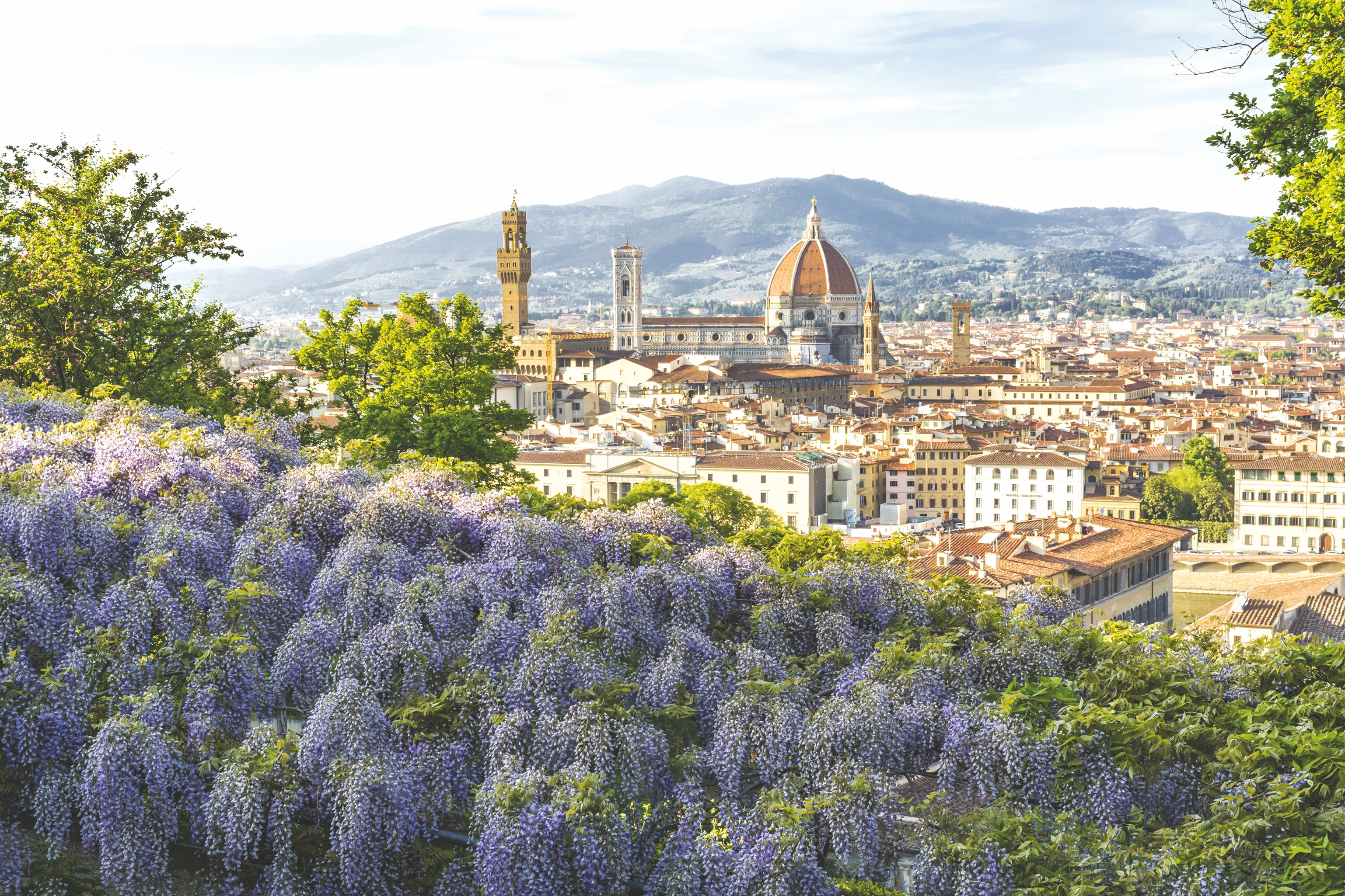 The view of the Duomo from the Bardini Gardens in Florence